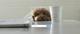 Instagram Promoted Posts, la intersección de Ads y Content